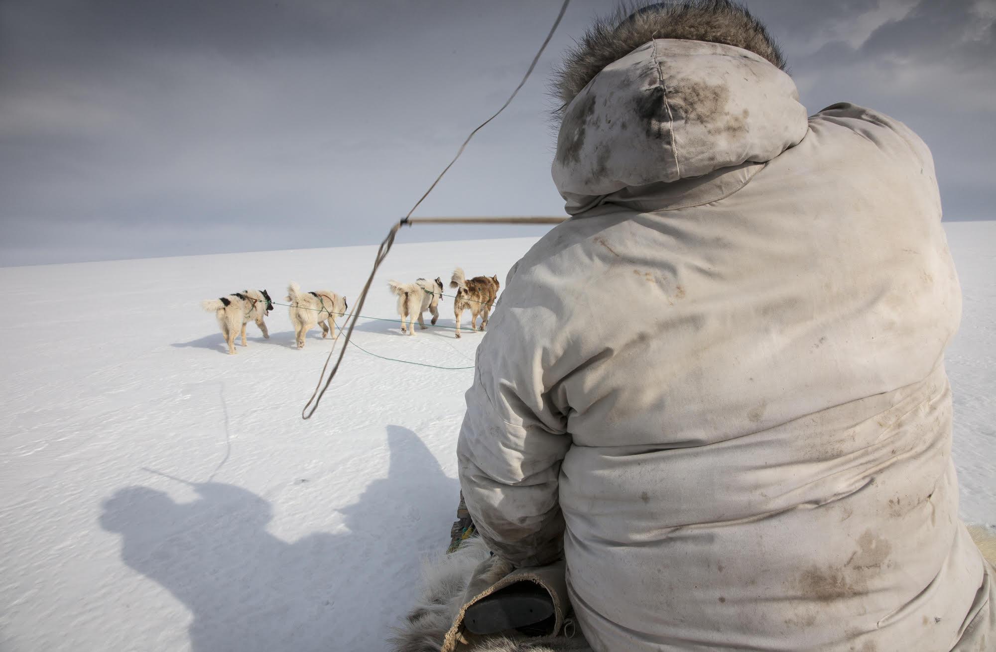 """Hunter."" © Corina Gamma, Subsistence Hunter Mads Ole Kristiansen, Qaanaaq, Greenland 2011"