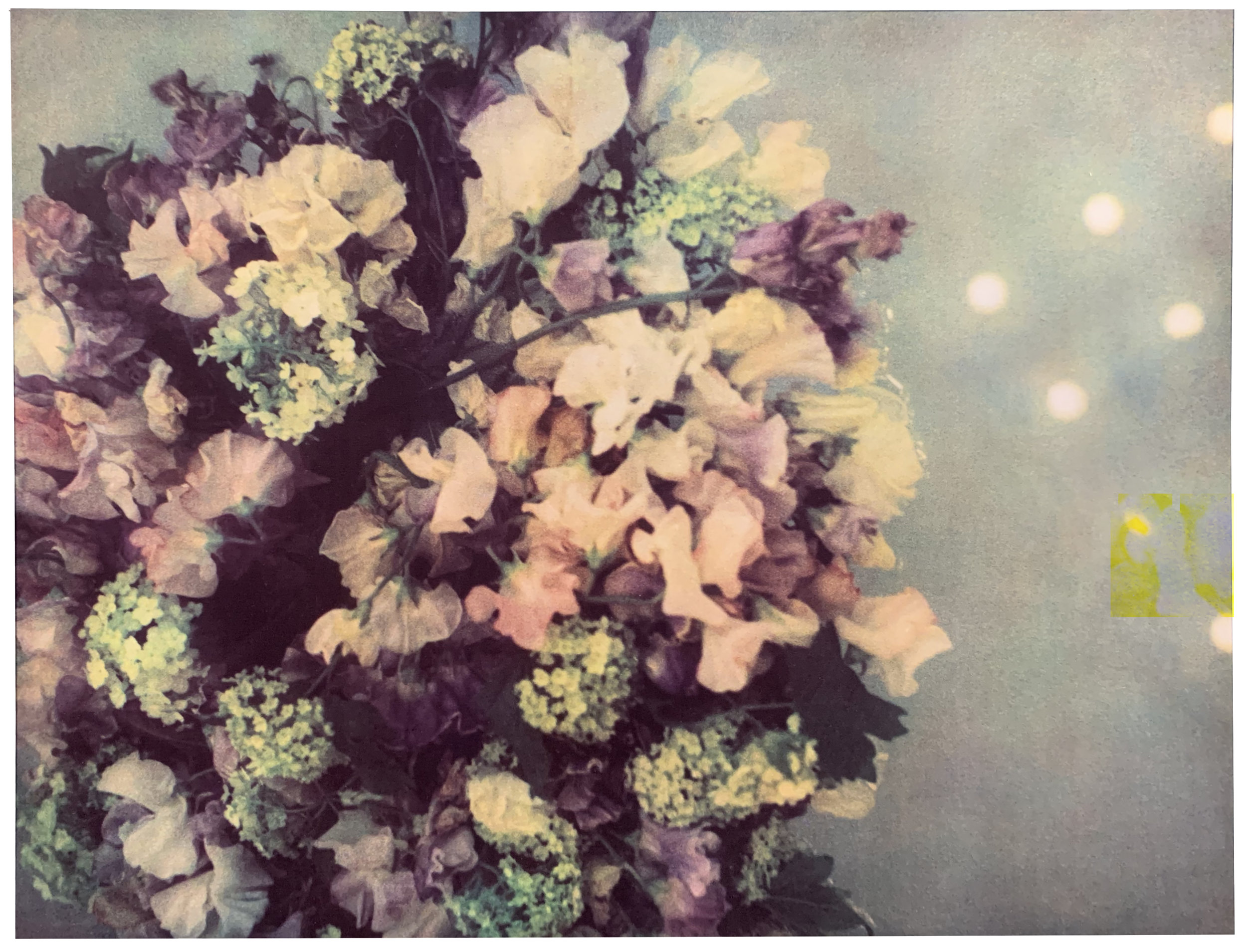 Karl Lagerfeld.  Floating Flowers,  2011. Fresson-Print. 23 5/8 x 31 1/2 inches. 60 x 80 cm.