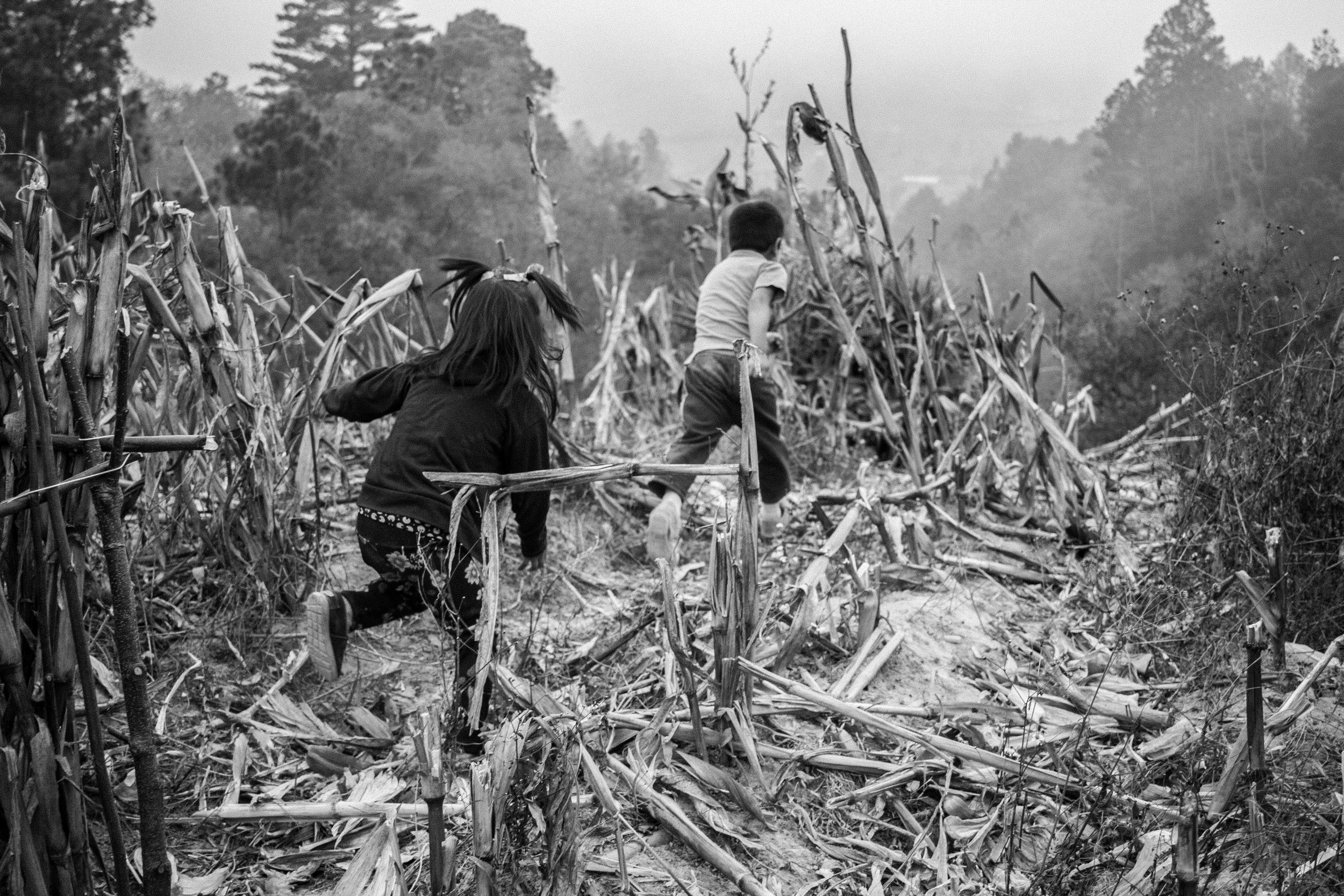 Two children run off into a corn field beside their highland home in the village of Chuacorral, near Solola, Guatemala. Unlike most modern children, the Maya children of the highlands spend their childhoods playing outside in nature, until they are old enough to begin work in the fields. © Cory Zimmerman, Feed the Children NGO
