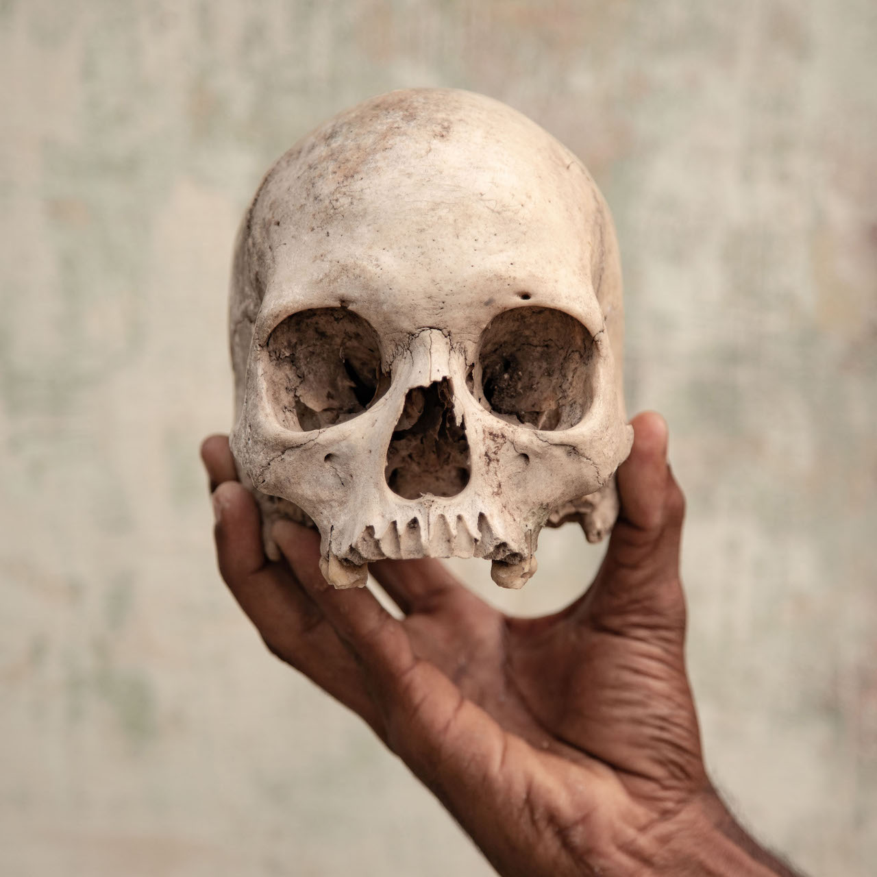 India, Tamil Nadu, May 2018. One of the skulls claimed to be the skull of a farmer who committed suicide, held by Mr Premkumar, a member of the South Indian Farmers Association. This skull was also used during a protest in Delhi in 2017, where farmers demanded a drought relief package and loan waiver for peasants from the state © Federico Borella, Italy, Shortlist, Professional, Documentary, 2019 Sony World Photography Awards
