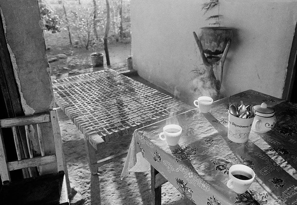 "© Emily Matyas, ""Morning Coffee.""  Sol y Tierra  by Emily Matyas"