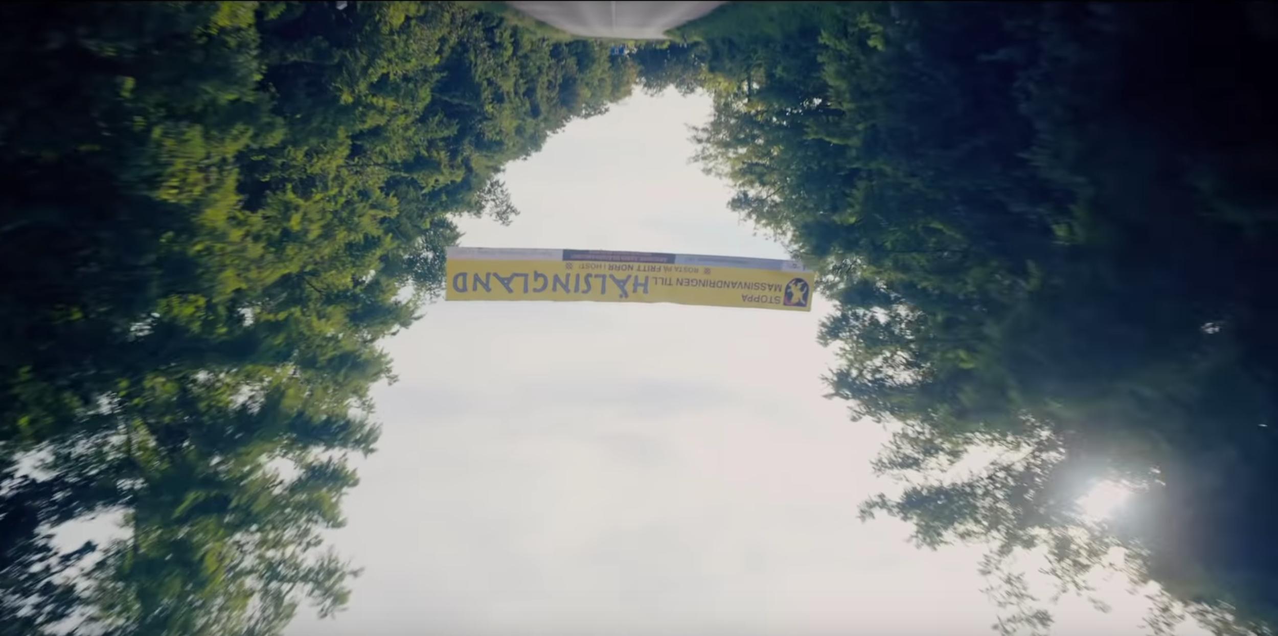 Film Review: MIDSOMMAR (2019) Dir  Ari Aster — Musée Magazine