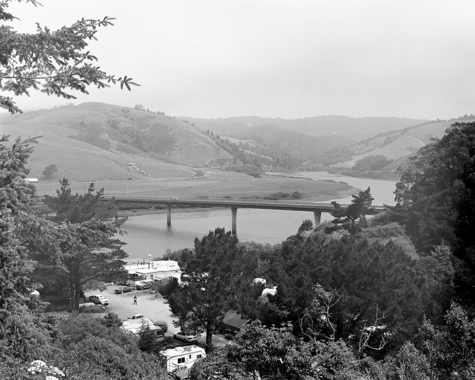 The Russian River, from the series Parliament of Owls © Jack Latham. Courtesy BJP.