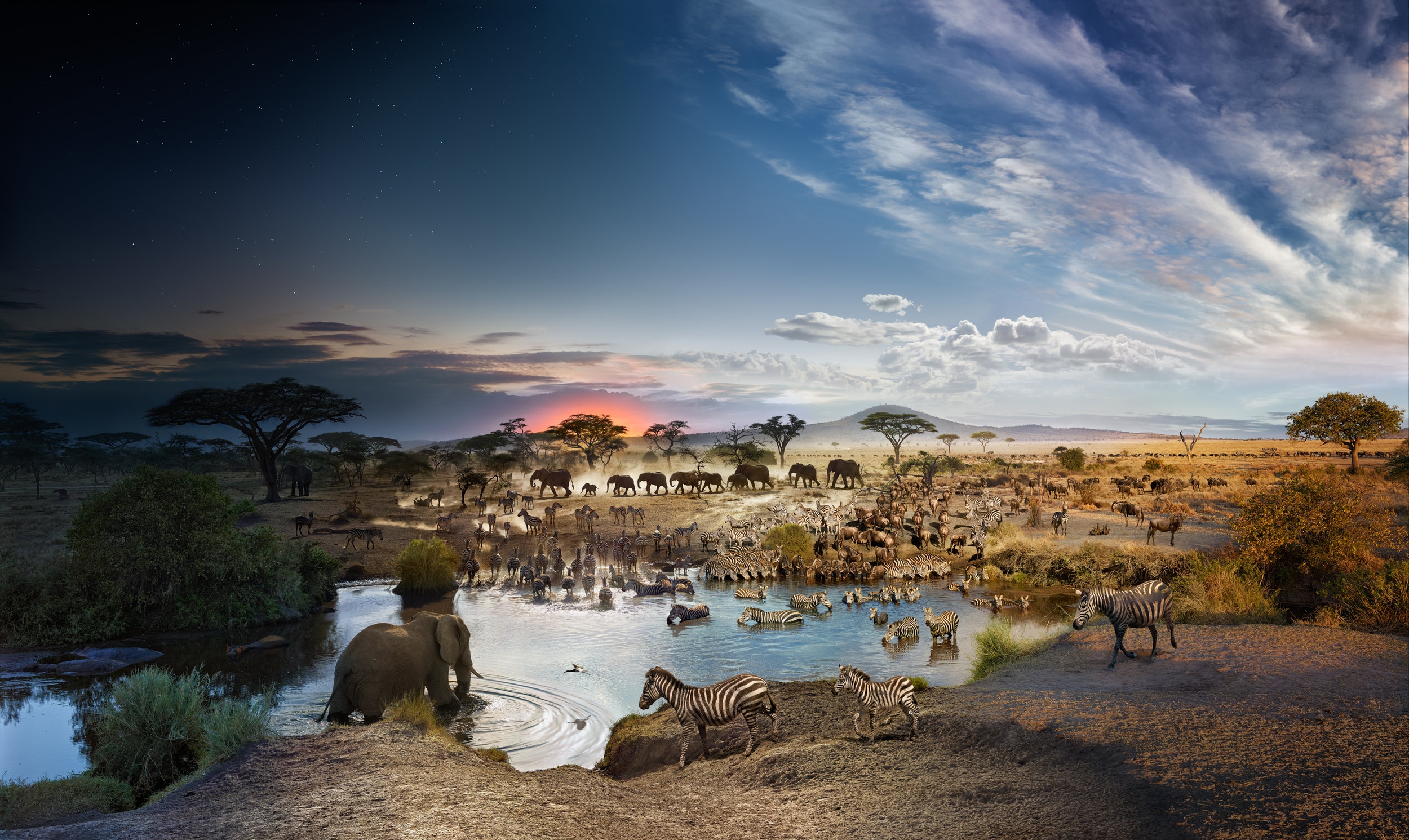 Serengeti National Park, Tanzania, Day to Night™, 2015