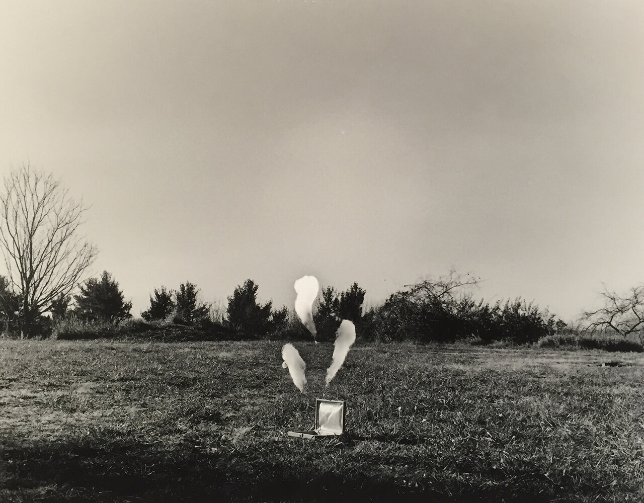 """Occurrence, silver gelatin print, 16x20"""", 2016 © Kelsey Dillow"""