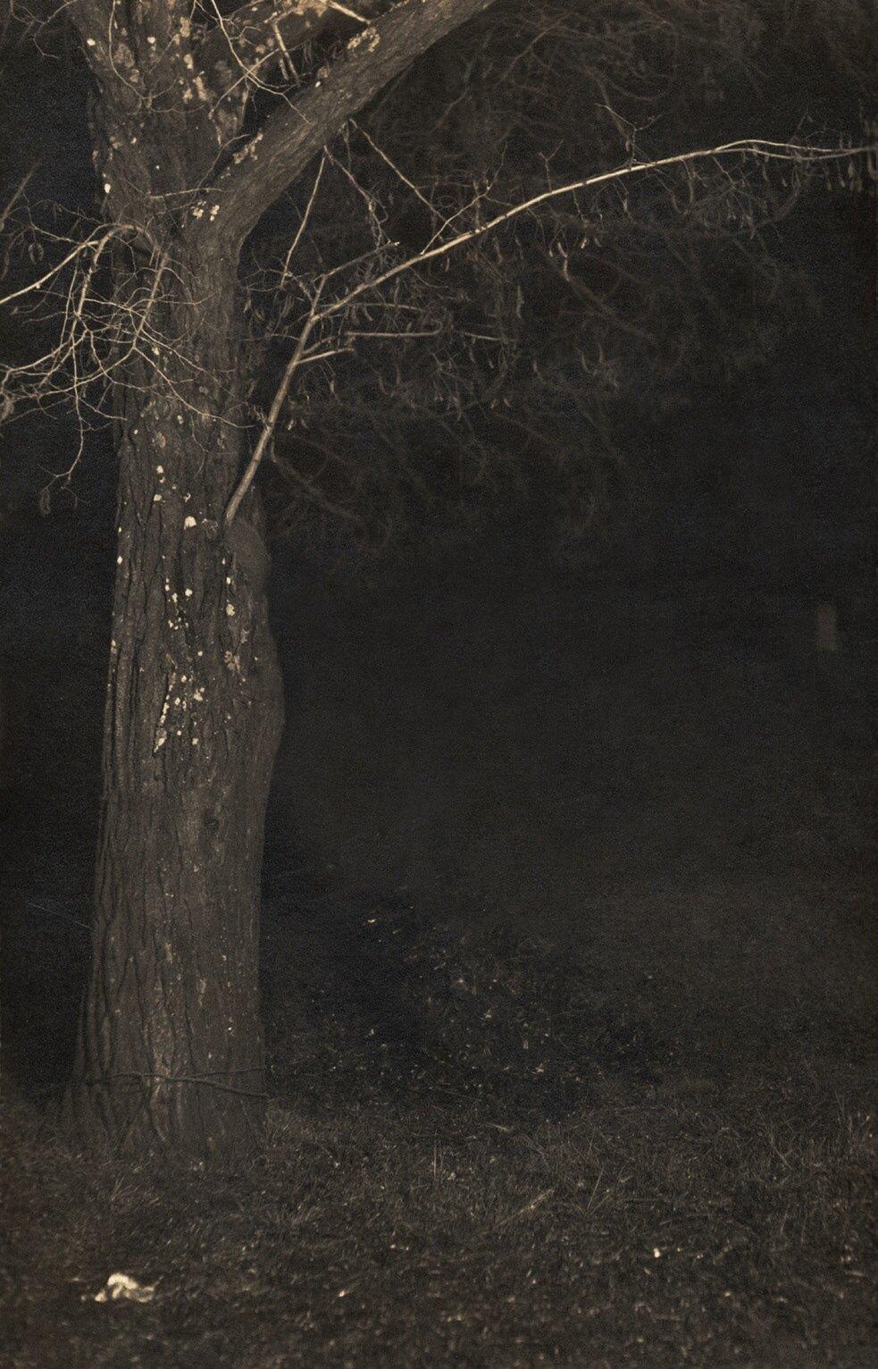 Ken Gonzales-Day, Franklin Avenue , Erased Lynching Series, 2004.