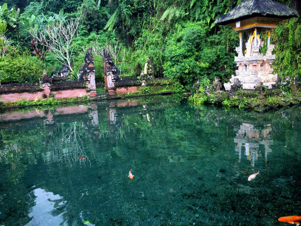 SEBATU - SACRED WATERS TO PURIFY THE SOUL