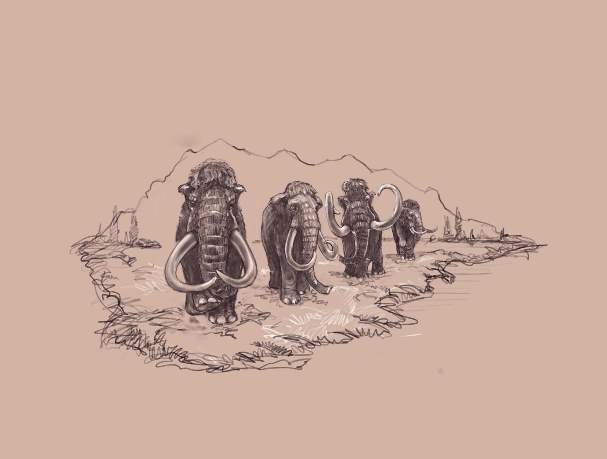Woolly-Mammoth-Landscape_Sepia-Enlarged-2_resized.jpg