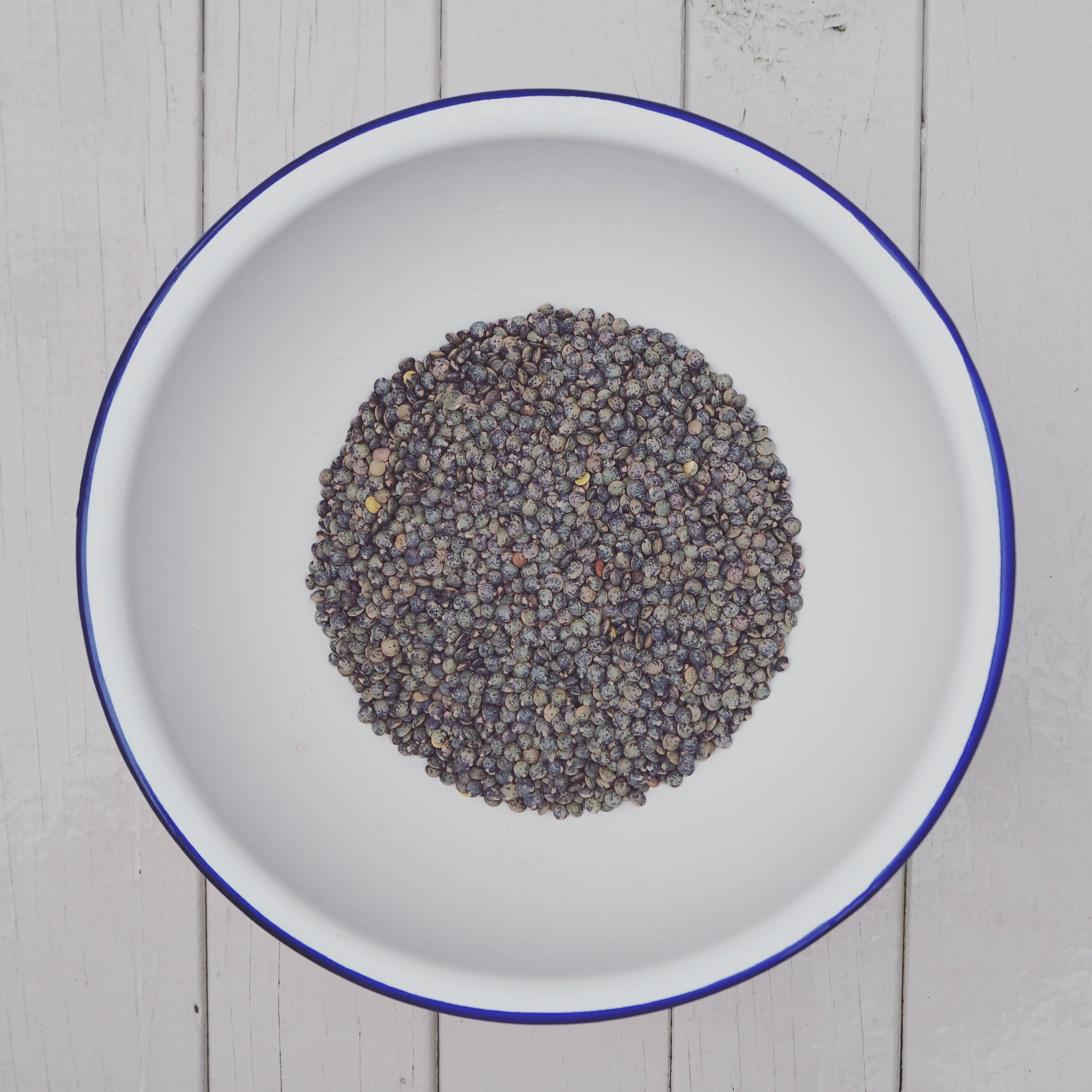 French green lentils (from  The Behaviour Beet )