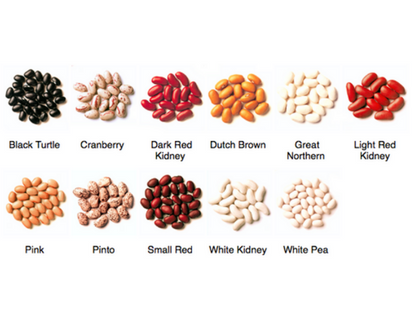Bean Types. Photo by   Pulse Canada.