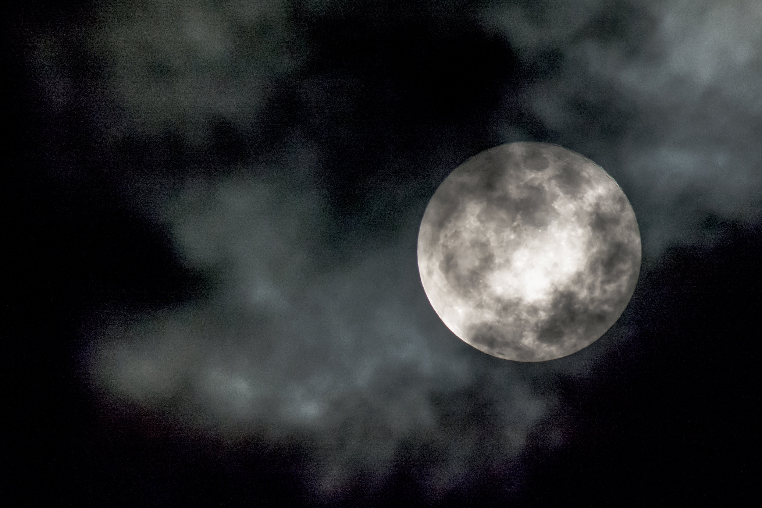 the wolf moon.jpg