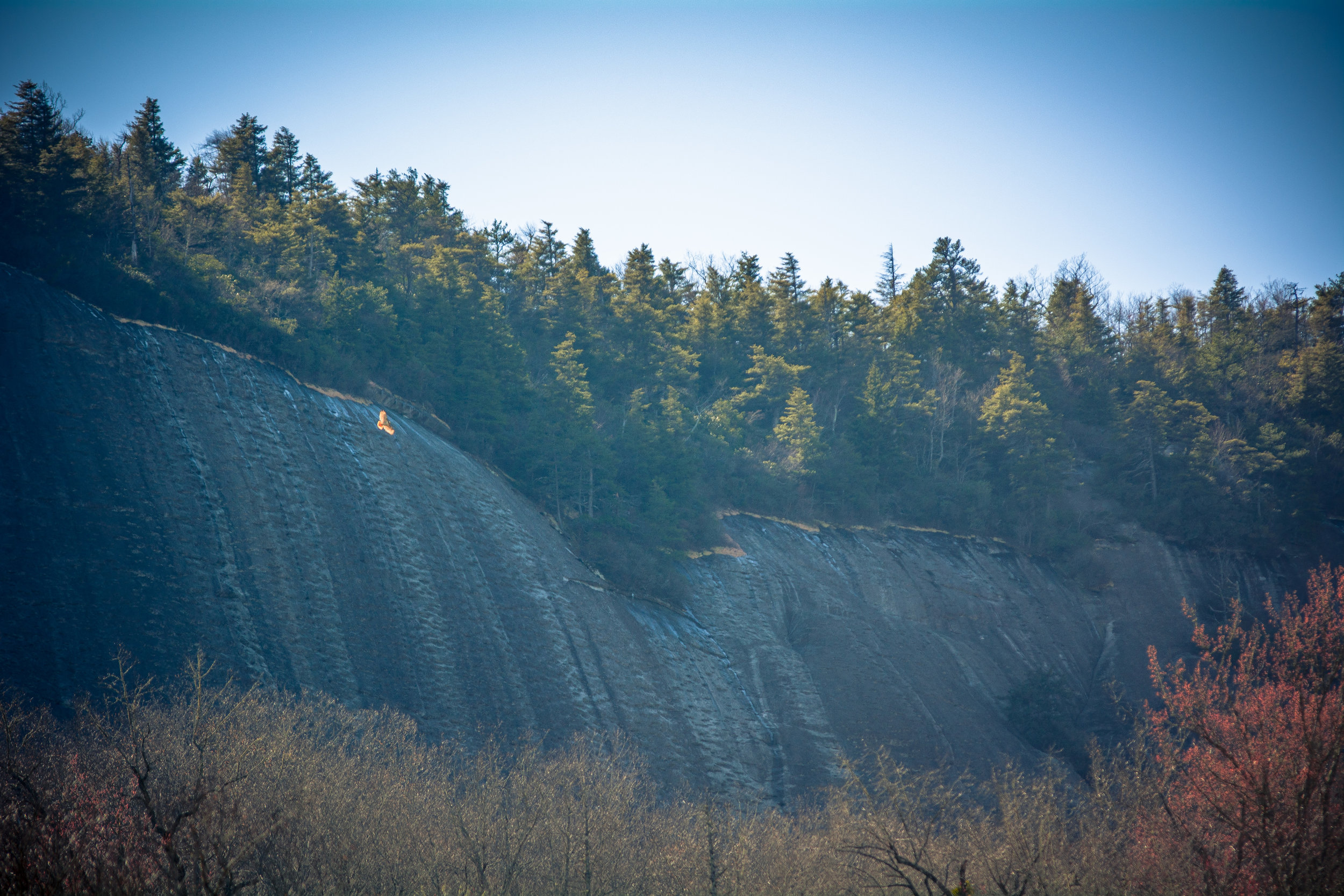 Waterfalls-43.jpg