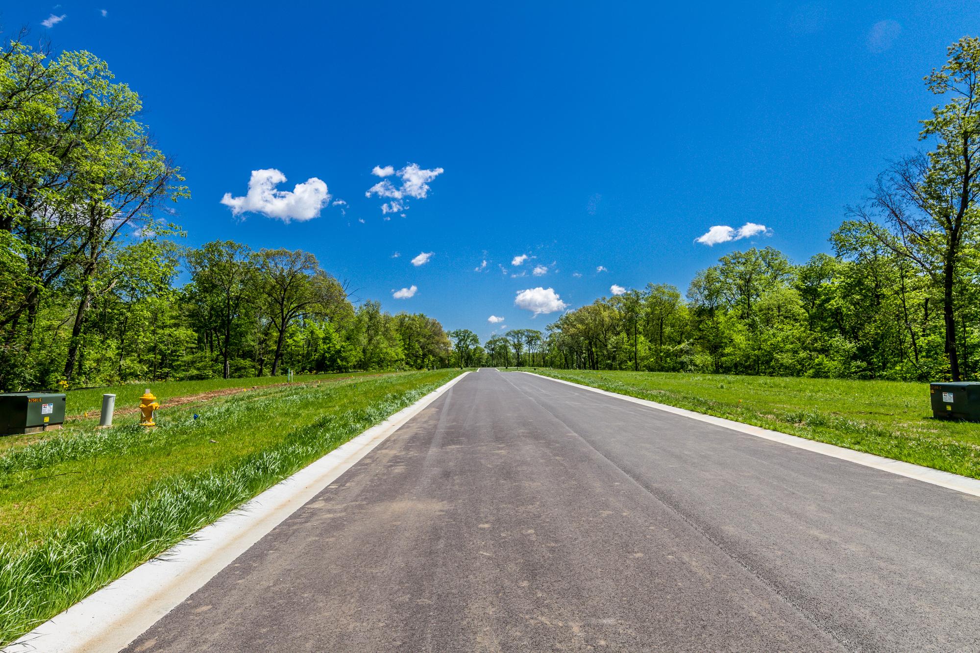 Bethel_Ridge_Farms_O'Fallon_Illinois_Progress_5.3.17-1.jpg