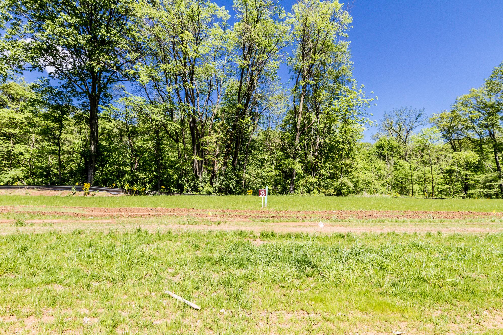 Bethel_Ridge_Farms_O'Fallon_Illinois_Progress_5.3.17-2.jpg