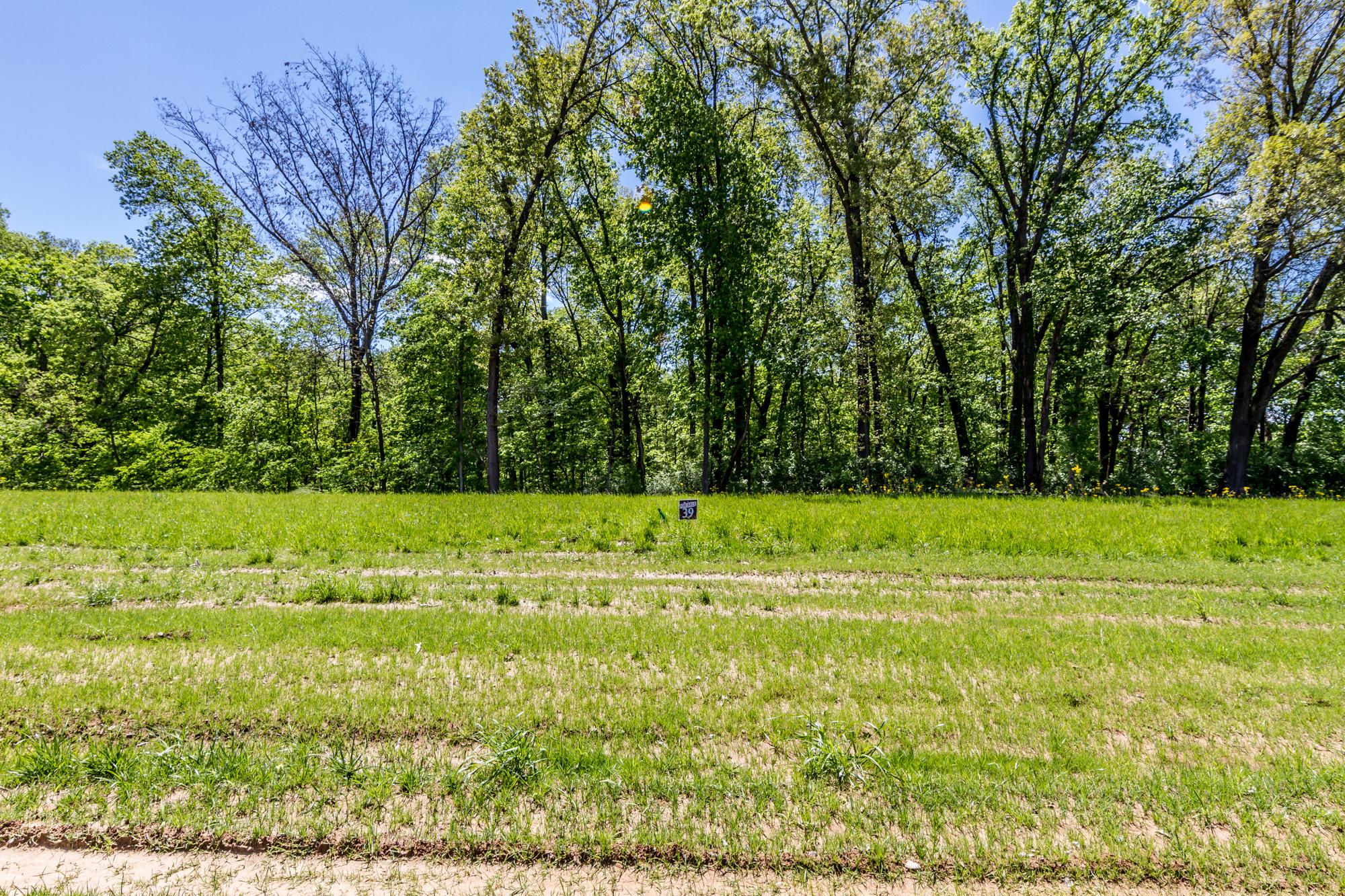 Bethel_Ridge_Farms_O'Fallon_Illinois_Progress_5.3.17-3.jpg