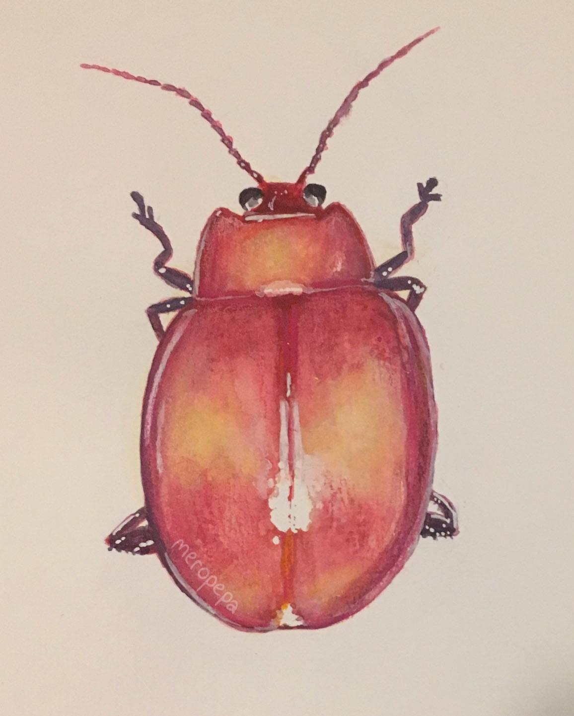 """Beetle""   Watercolor and gouache on Moleskine watercolor sketchbook"