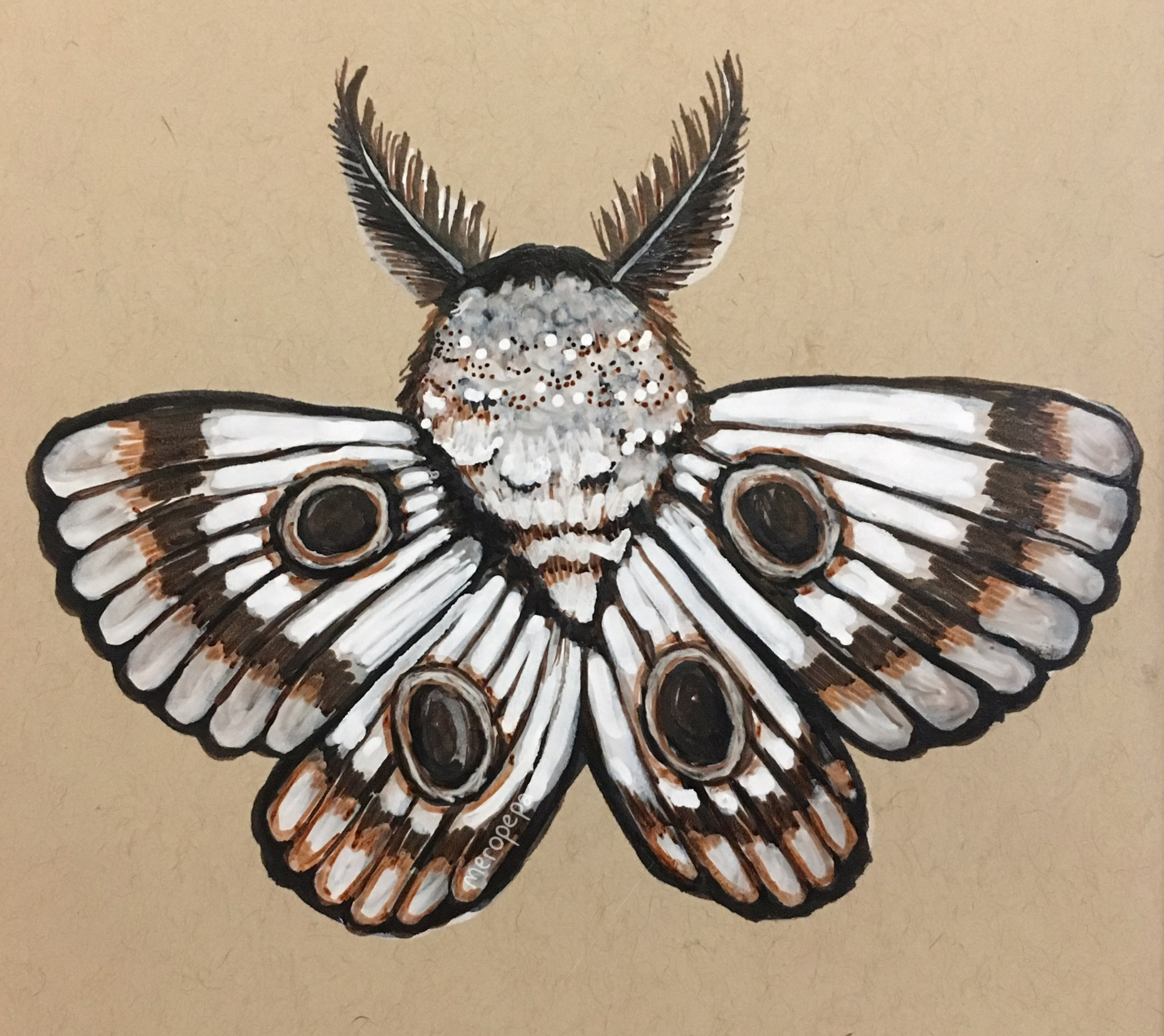 """""""Moth""""   Ink and paintpen on tan-tone Strathmore paper"""