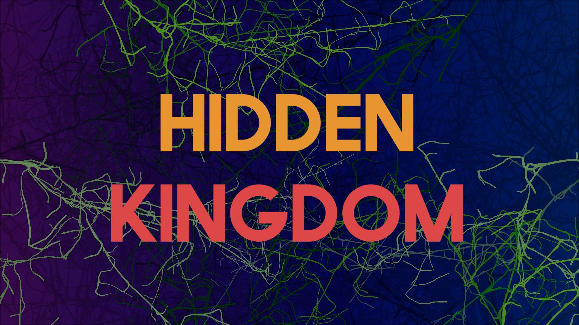 Hidden Kingdom Final.00_00_14_03.Still002.png