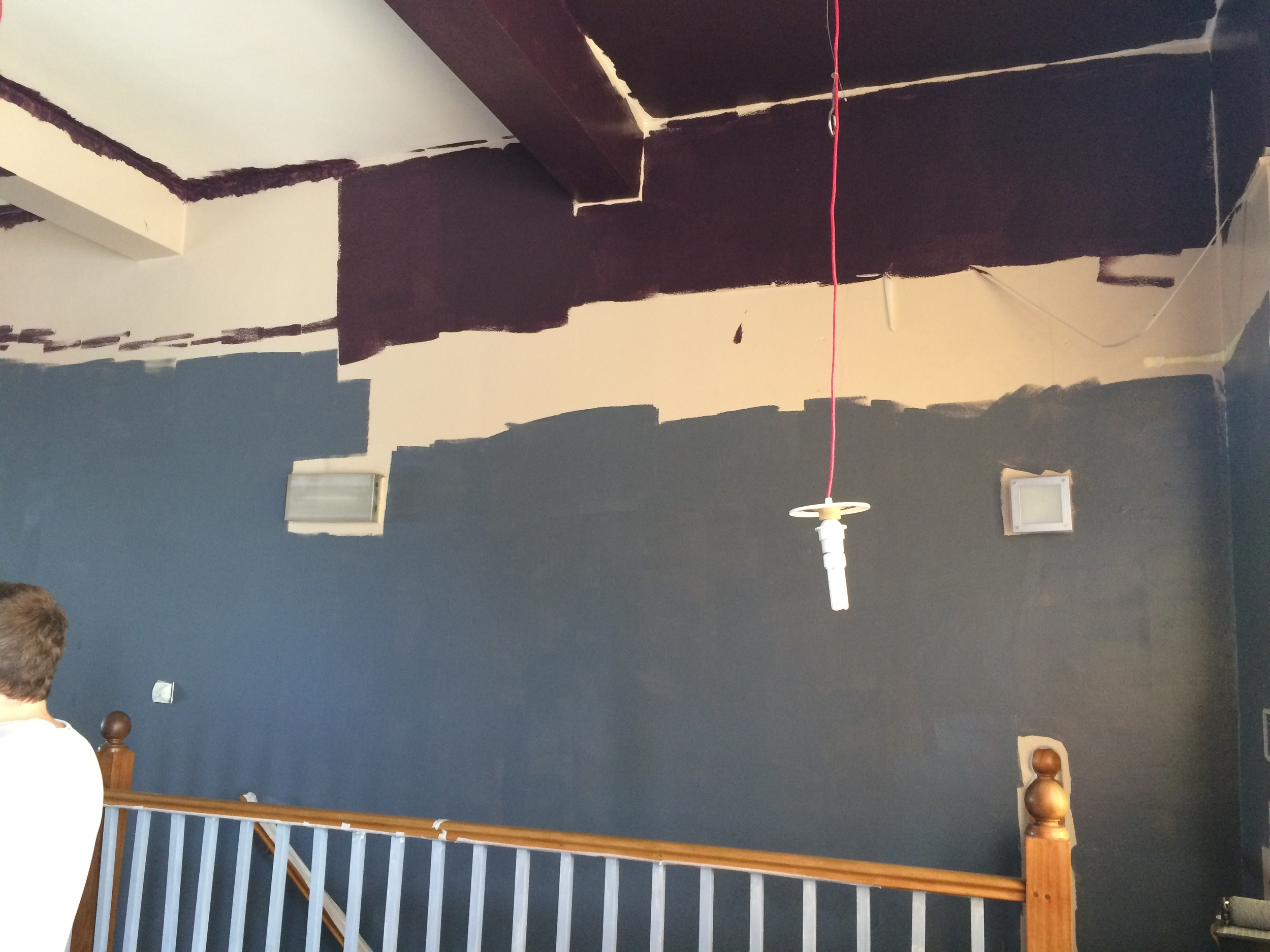 'I promise, I have a plan!' -me to our sceptical paint crew (aka friends and family!)