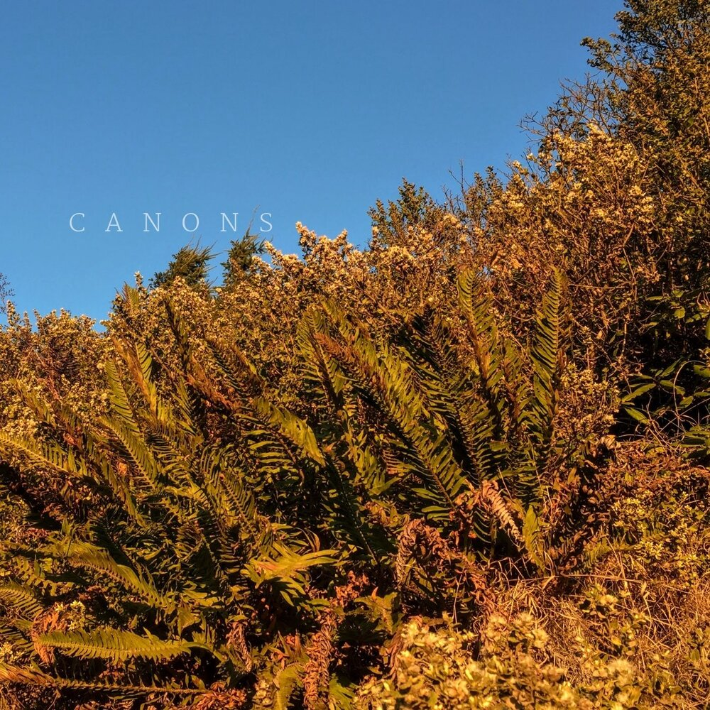 Canonscover.jpg