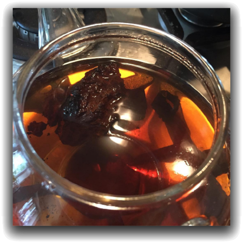 Chaga Mushroom being simmered in a glass kettle. Simmering lightly for about 5 minutes (not boiling viscously).
