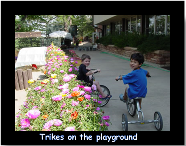 Trikes on the playground.PNG