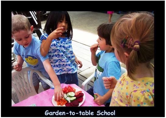 garden-to-table.JPG