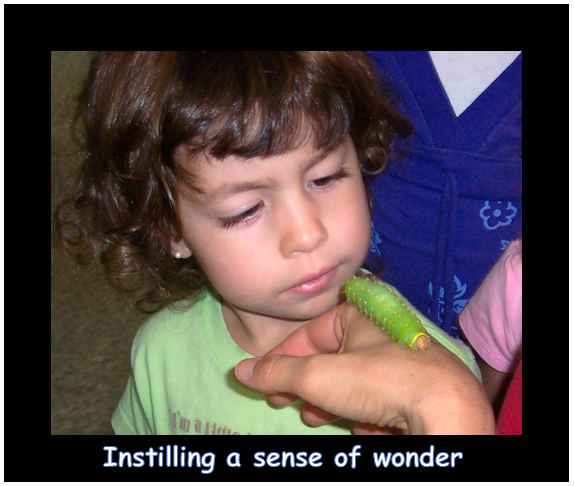 instilling a sense of wonder.PNG