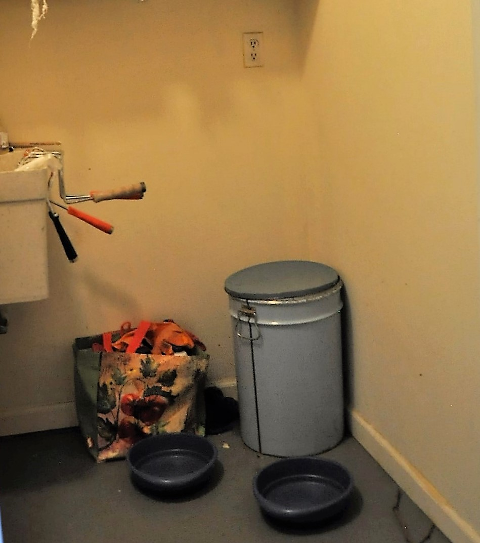Before image of the utility room where the dogs sleep.