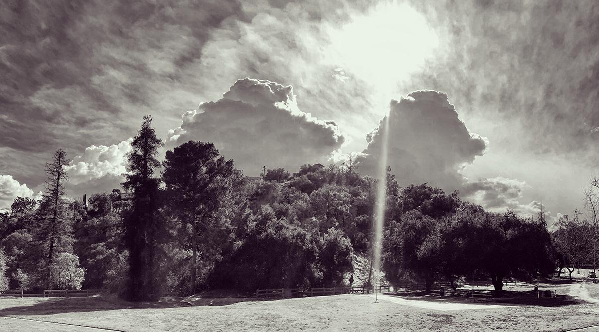 griff-tree-clouds-2899.jpg