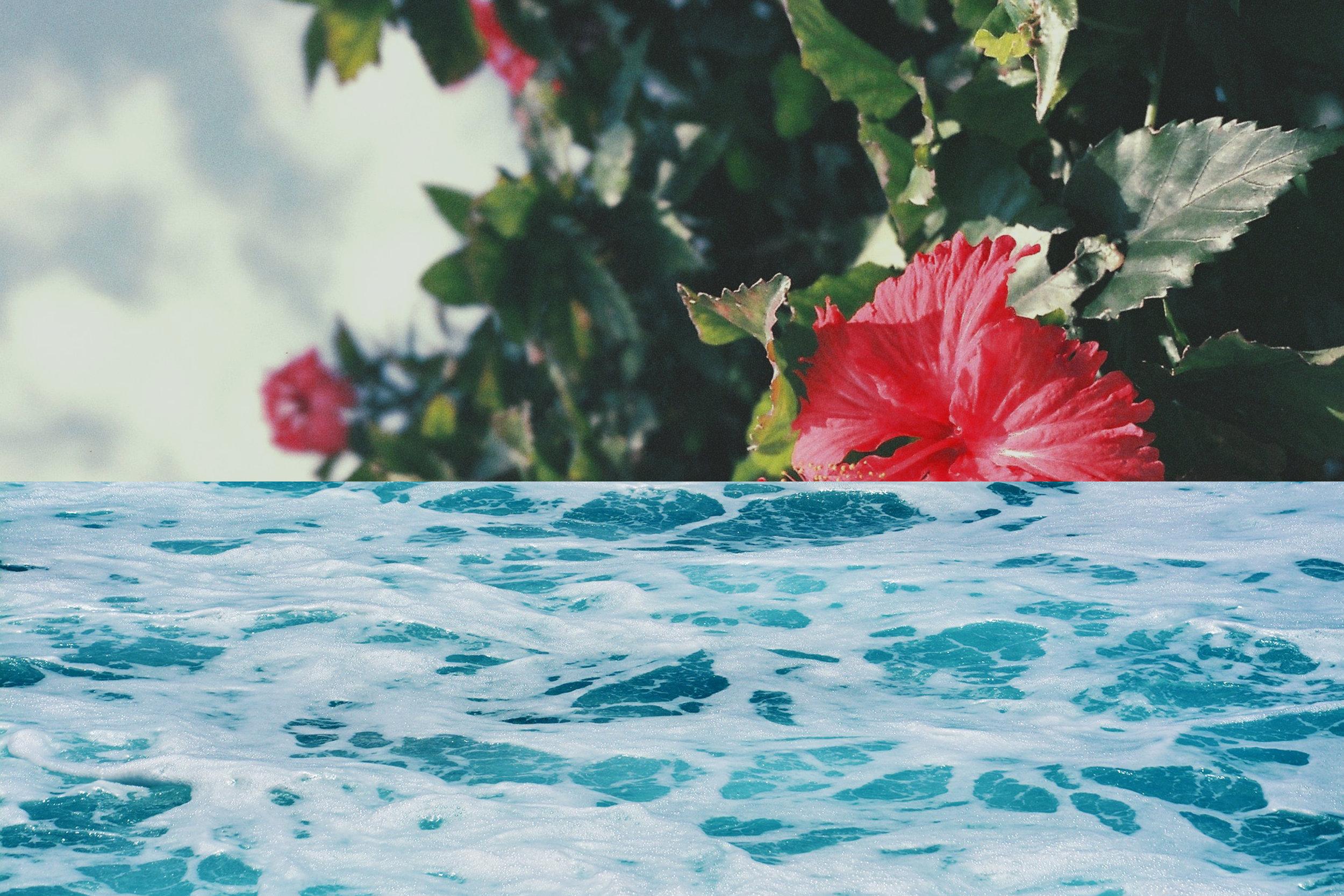 aloha dyno9.jpg