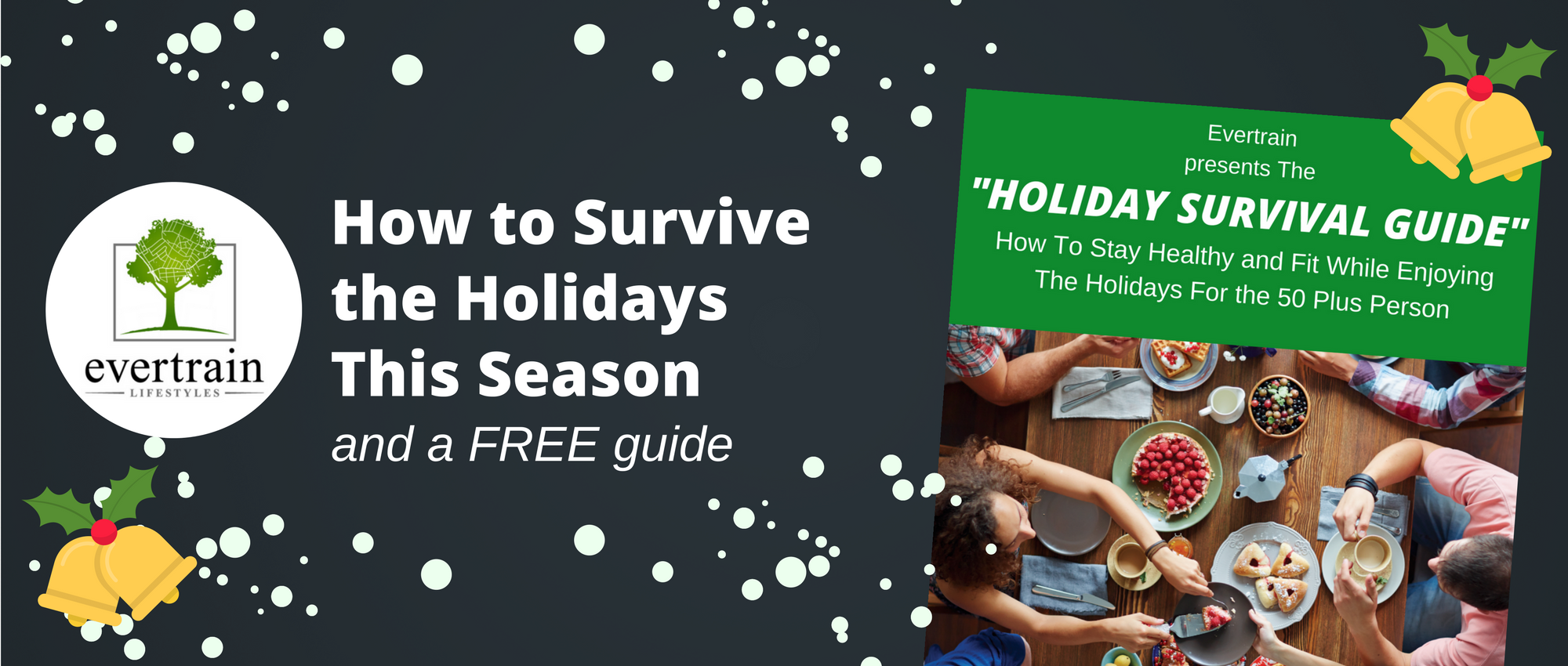Blog Title - Holiday Survival Guide.png