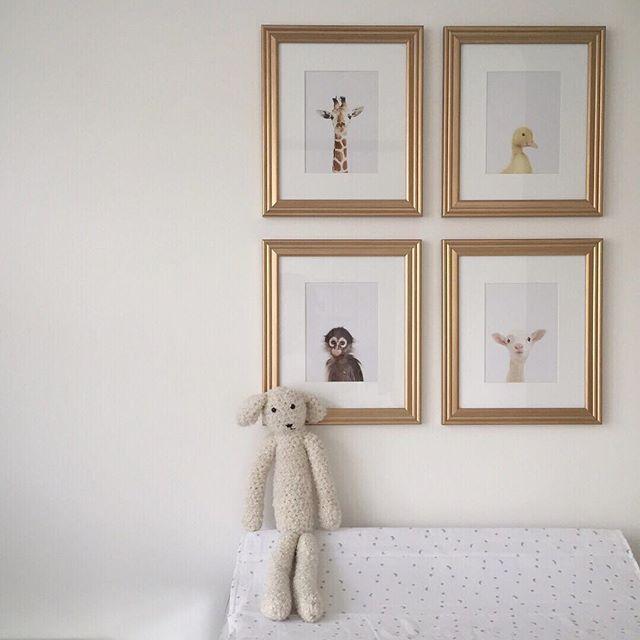 Billy's room 🐻 #littlebillybear