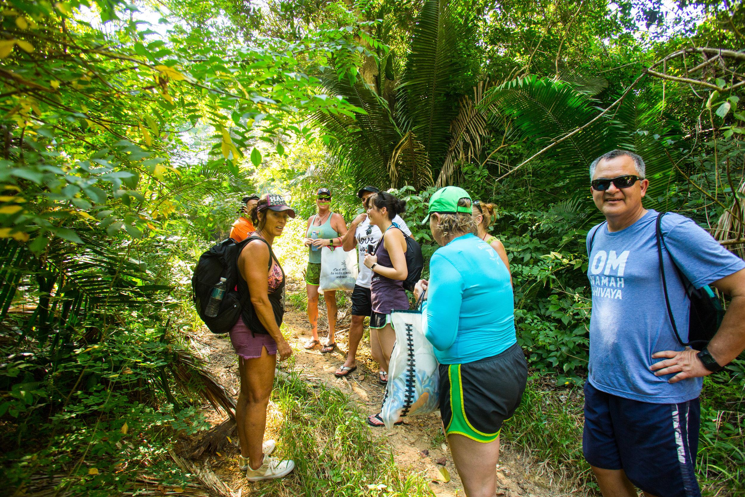 jungle hike to mud beach.jpg