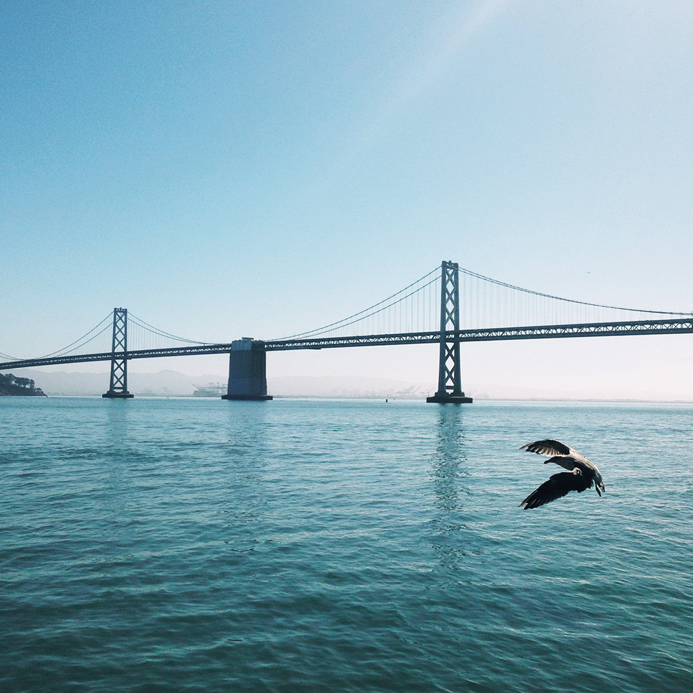 Bay Bridge | San Francisco, CA
