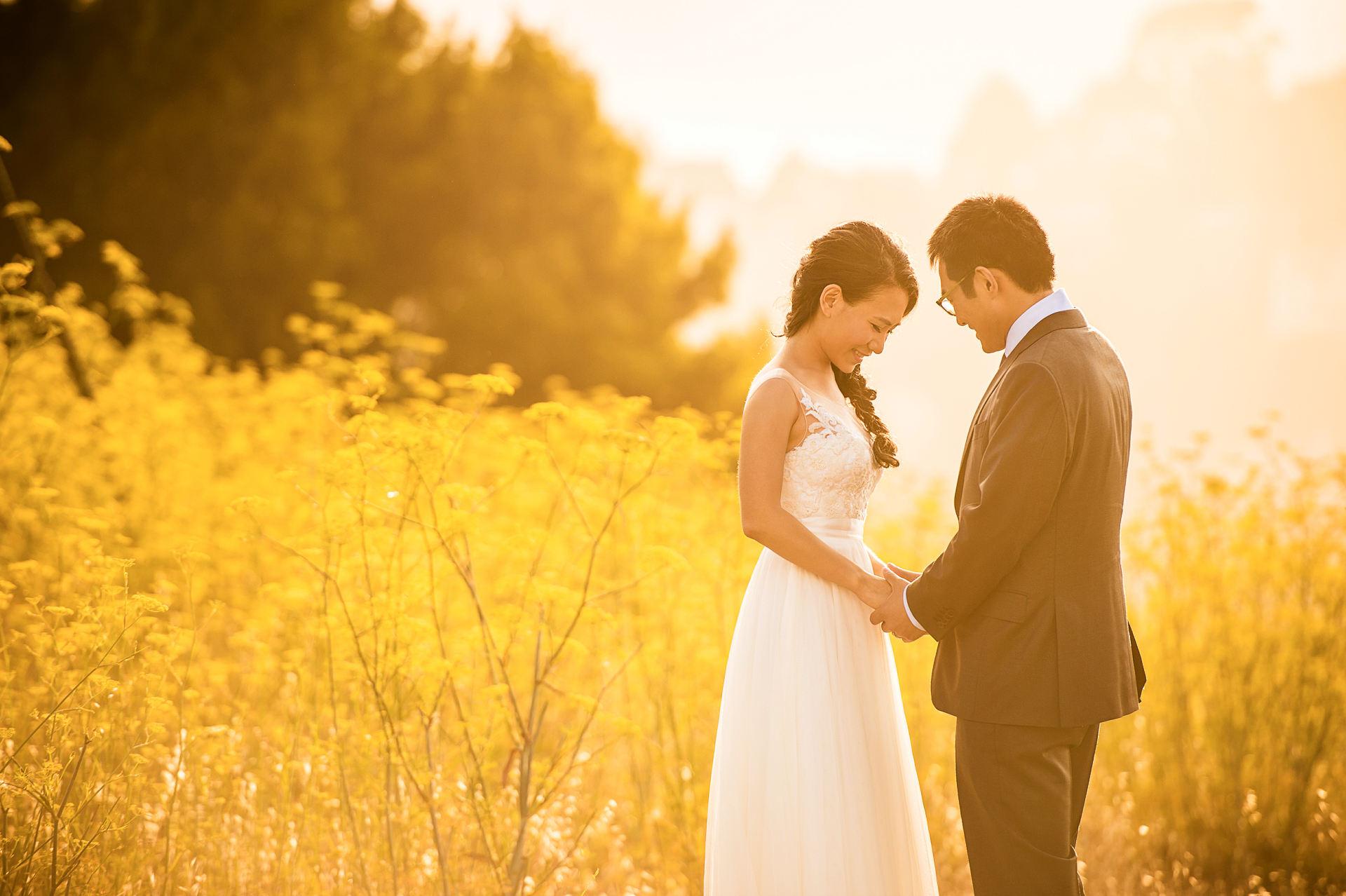 旧金山湾区夕阳婚纱照 san francisco pre wedding
