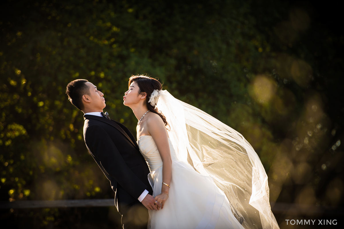 Los Angeles Engagement & pre wedding photography- 洛杉矶婚纱照 - Tommy Xing08.jpg