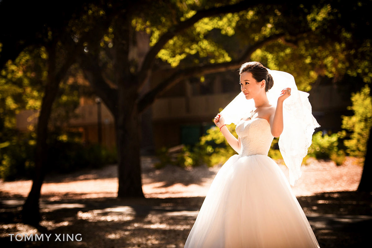San Francisco bay area pre wedding - 旧金山湾区婚纱照 - Tommy Xing08.jpg