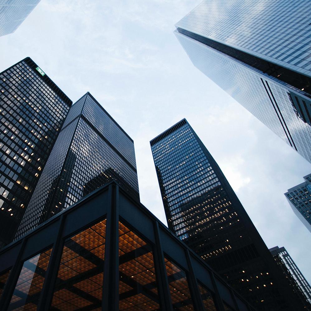 Established Businesses - Are you an established business looking for a marketing partner?