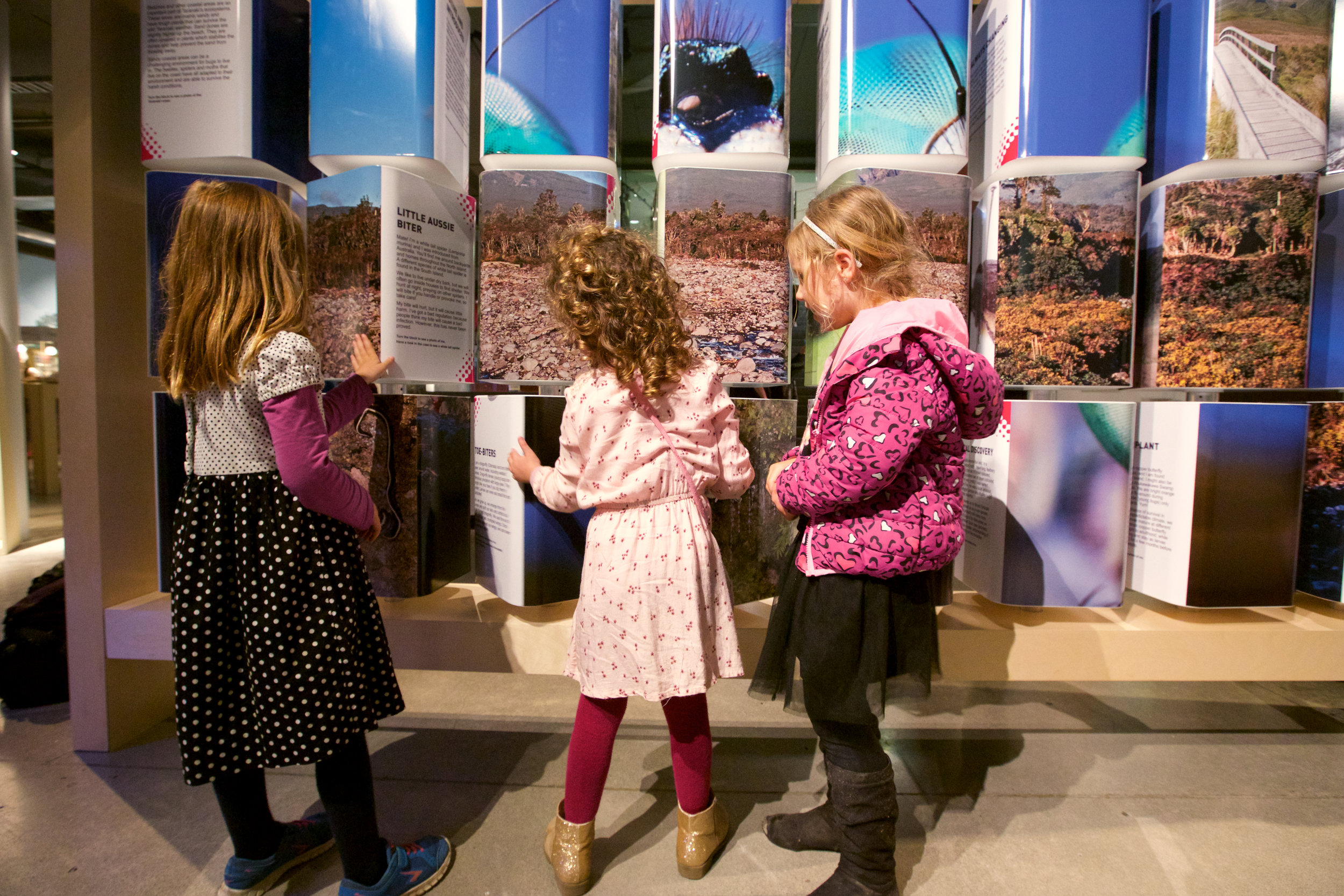 Children explore the bugs! Our Backyard heroes exhibition