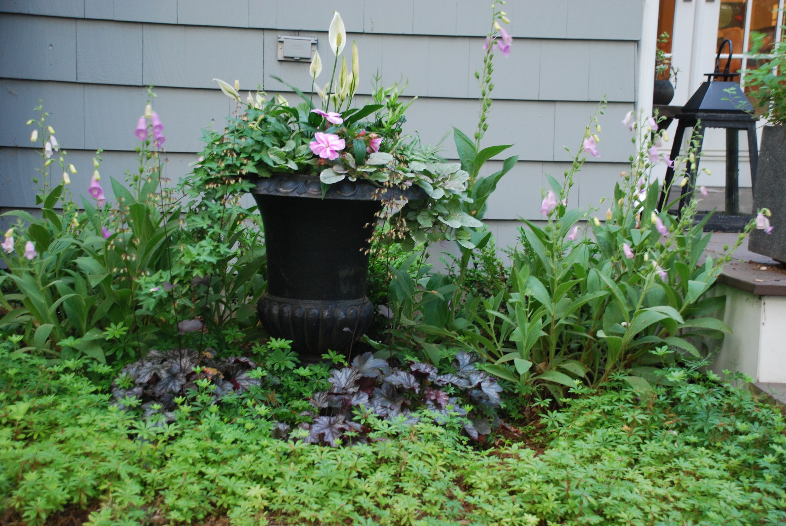 Sunny small garden with digitalis and a decorative urn