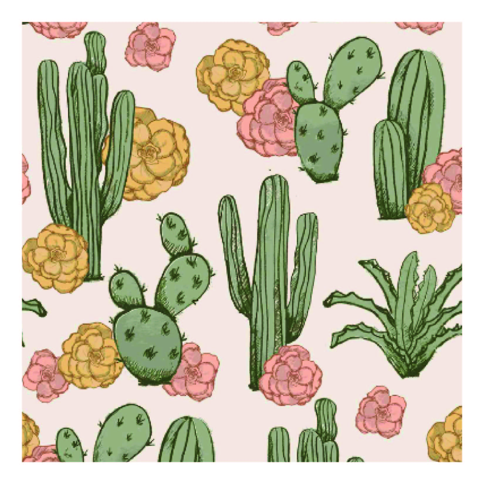 cacti illo sample-01.jpg