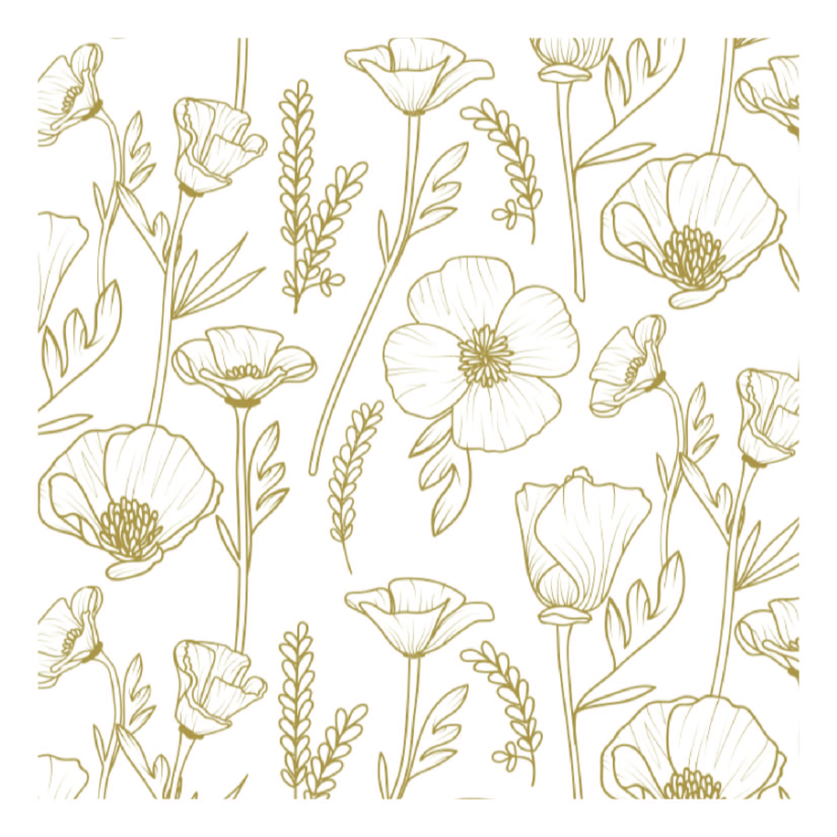 poppy illo sample-01.jpg