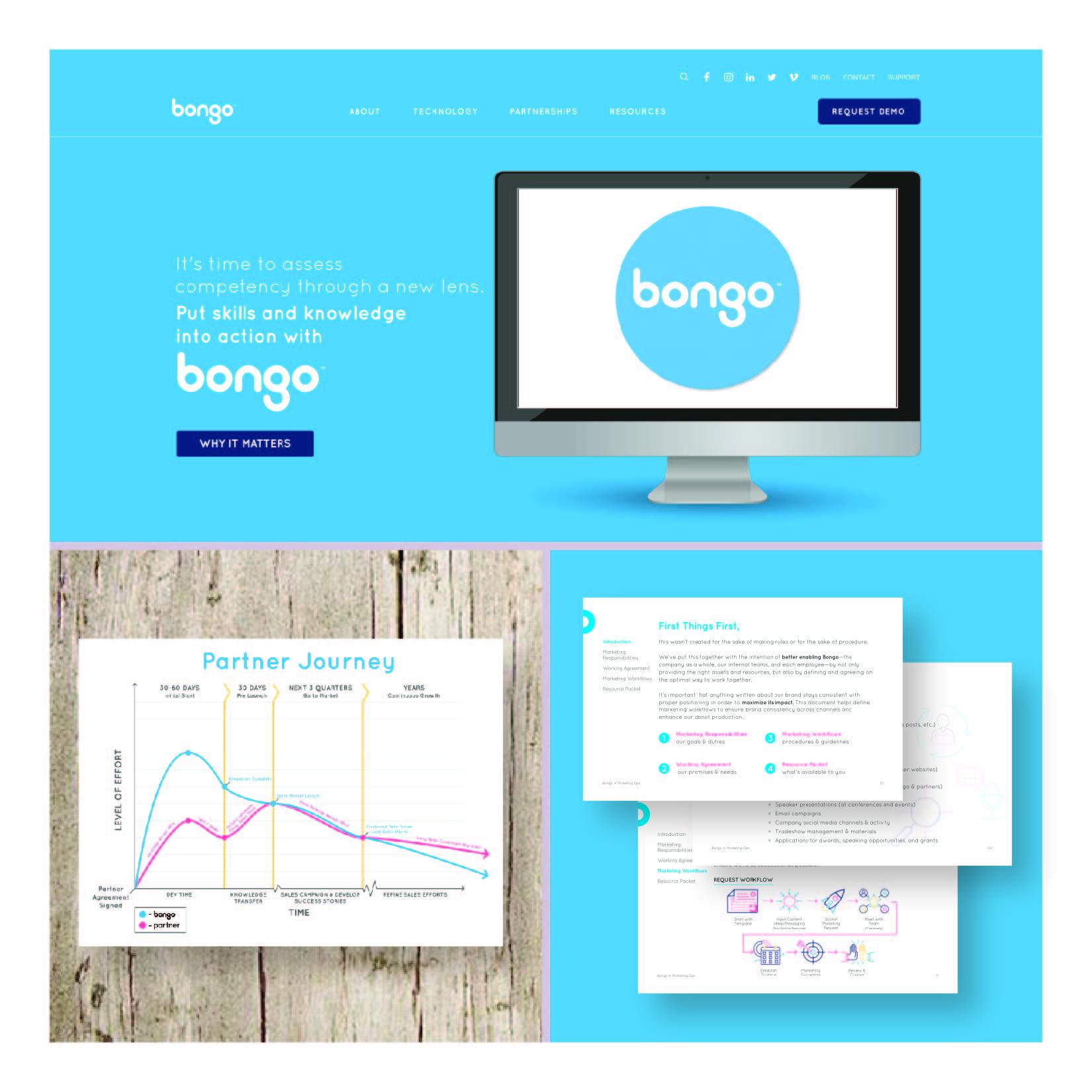 bongo samples-01.jpg
