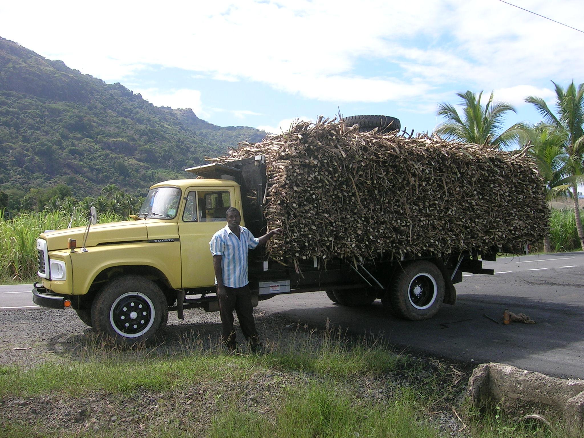 cane truck.JPG