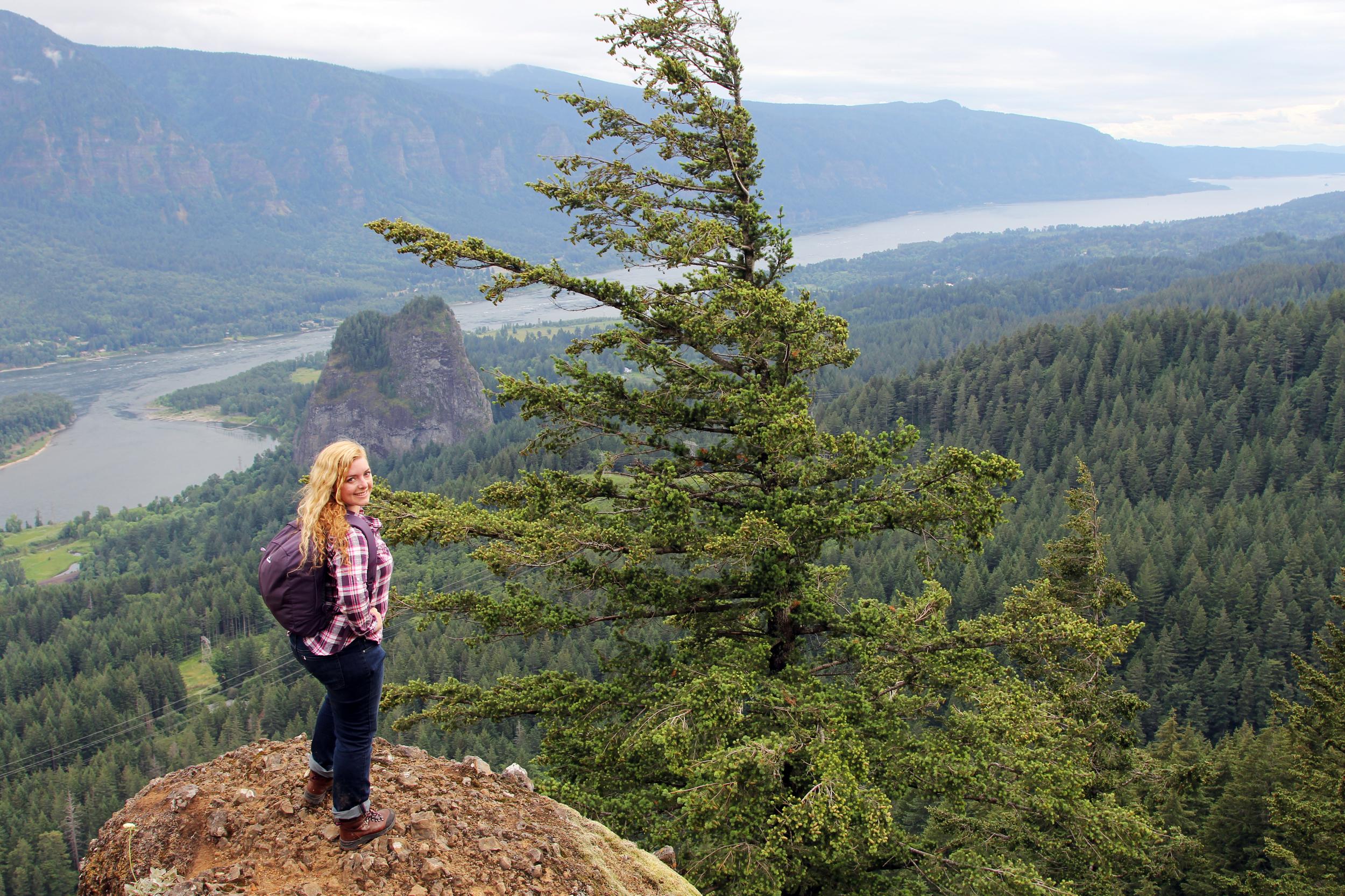 Hamilton Mountain, Washington State, USA