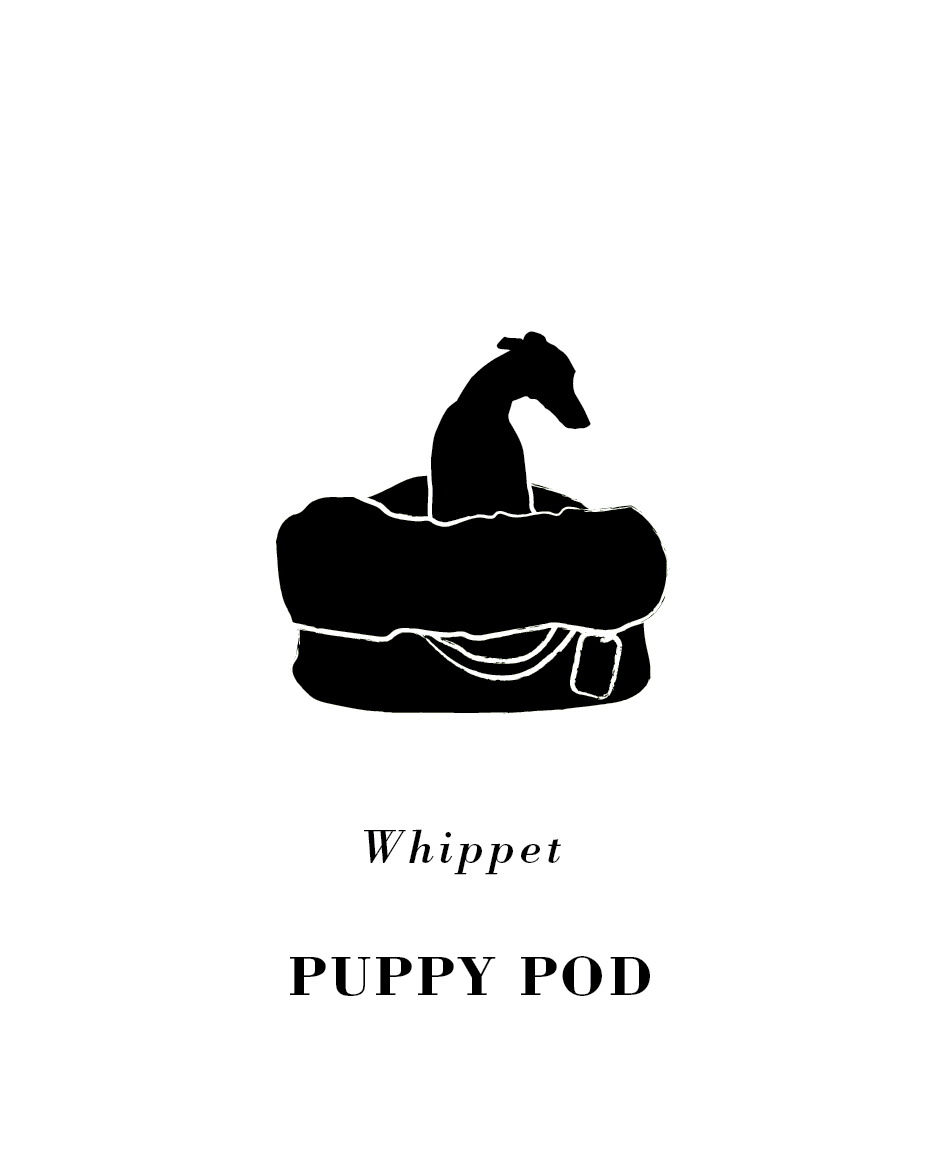 Puppy Pod.png