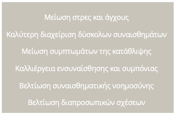 ΣΥΝΑΙΣΘΗΜΑΤΙΚΑ ΟΦΕΛΗ ΓΚΡΙ.png