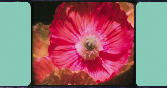 Janet Merewether | Short before the movie | 2003 | Super8 | 5:50