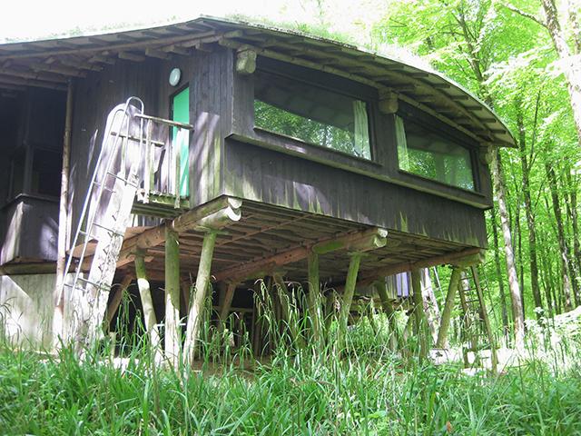 Hooke-Park-forest-lodge-cullinan-dorest-architect-bizley